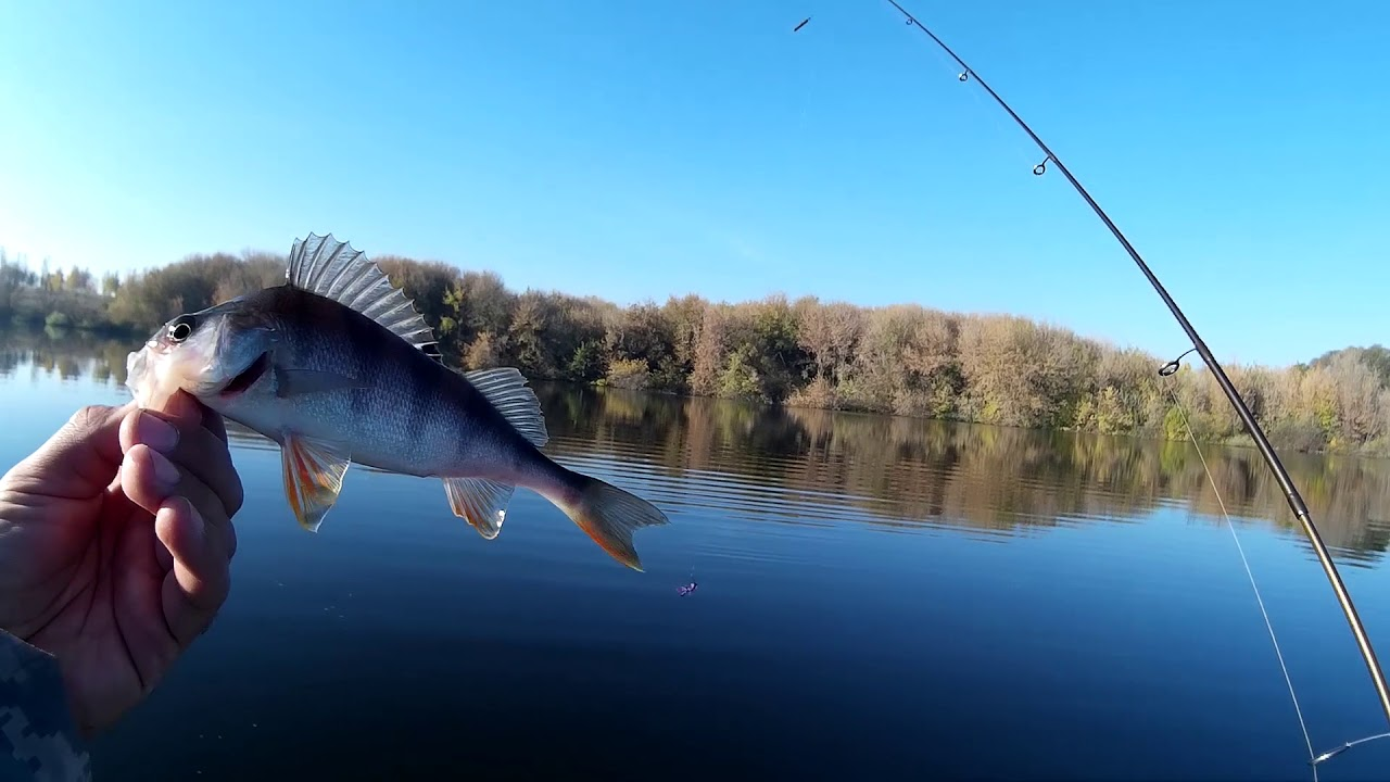 Рыбалка на Нижней Волге