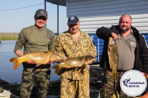 Рыбаки с сазанами