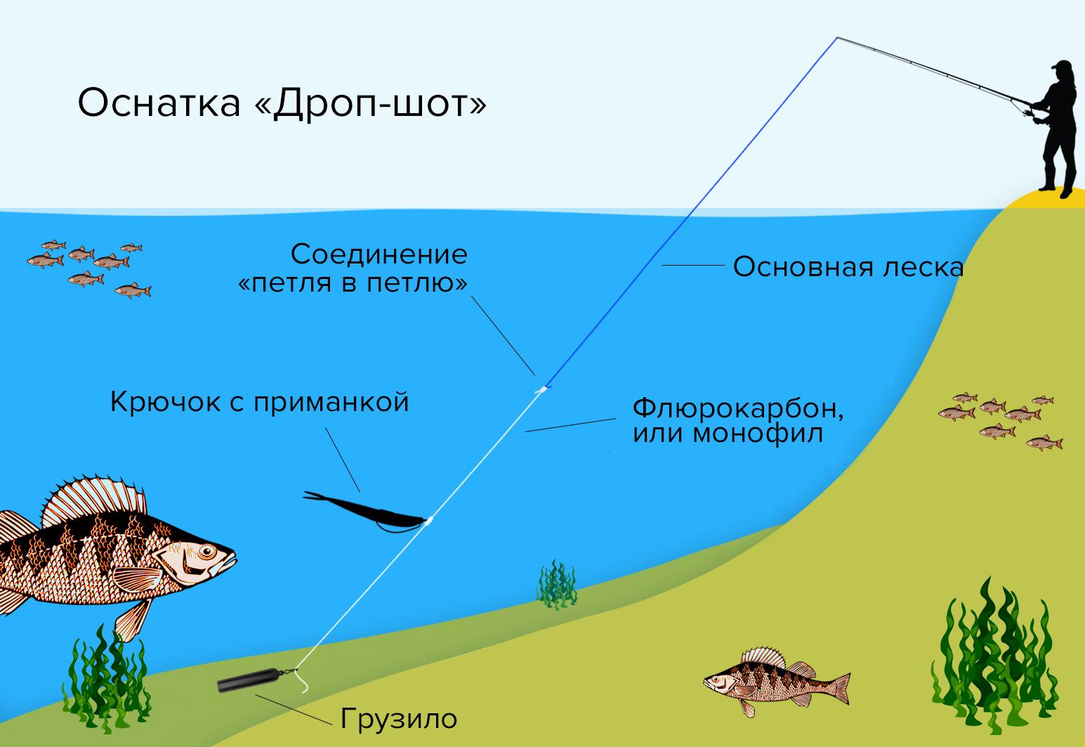 Дропшот рыбалка оснастка
