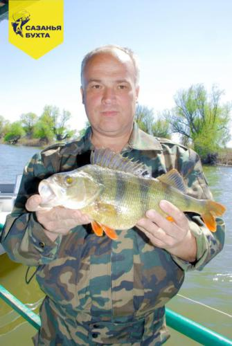 Рыбалка на крупного окуня