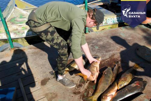 Улов сазанов на рыболовной базе