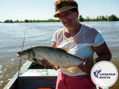 Рыбалка на жереха с лодки летом