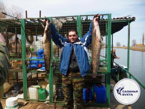 Ловля сомов осенью на раскатах