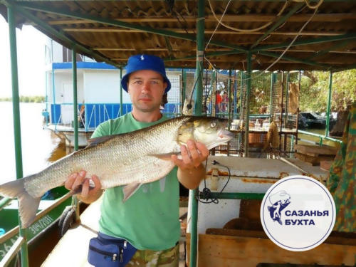 Рыбалка на крупных жерехов