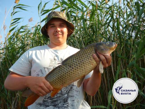 Рыбалка на сазана