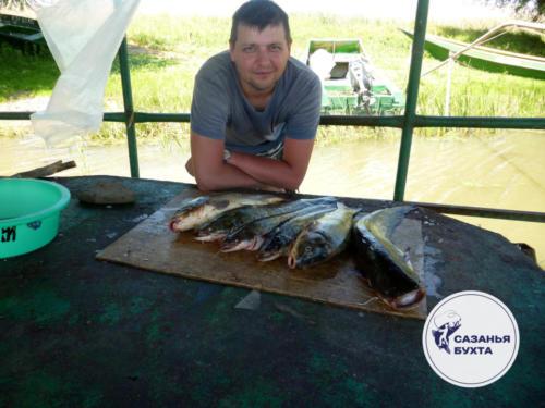 Отчет с летней рыбалки