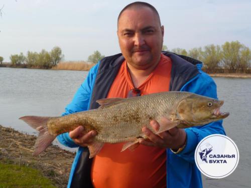 Весенняя рыбалка на жерехов